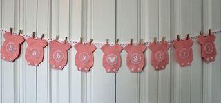 Pink onesie banner